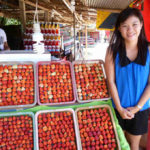 タイのフルーツ販売所