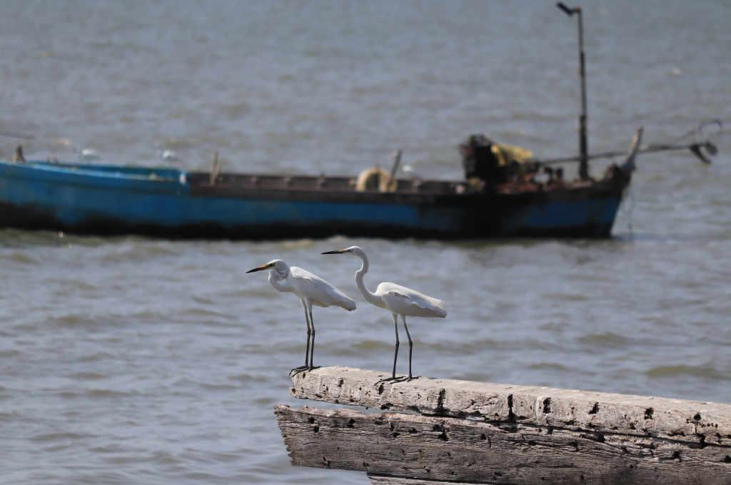 パタヤの海が見えるレストラン「ポンペッ」