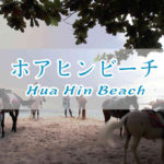 ホアヒンビーチで白馬に乗ろう